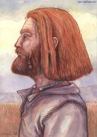 Viking Profile by emla
