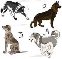 Point adopt- Dogs 2 :closed: by Kaeda-adoptables