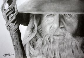 Gandalf- The Hobbit by Lageveen