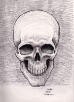 Skull 10-28-2012 by myconius