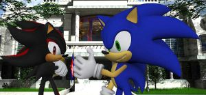 Shadow And Sonic White House by shadow759