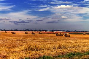 harvest time    Le temps des moissons by hubert61