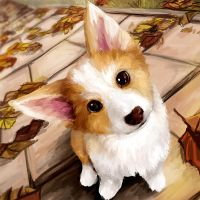 Corgi Autumn by amyanimalover