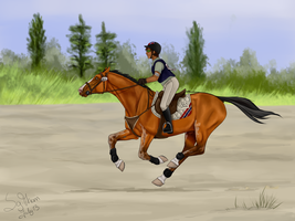 Olympics 2013 - Cross country by Joybird