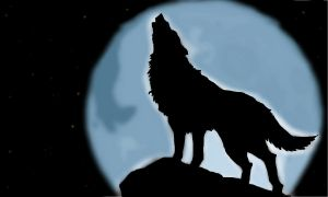 howling wolf by Scoutkat