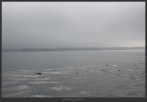 fog over the lake 3 by MidnightDaisyStudio