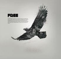 Free by karmagraphics