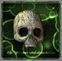 carved skull by priesteres-stock