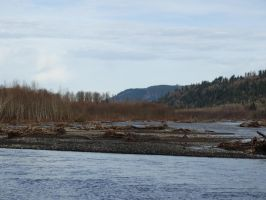North Fork river by ObnoxiousNox
