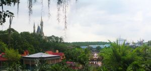 WDW: View from the Treehouse by toughtink