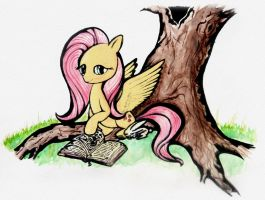 Fluttershy`s Reading by nicolaykoriagin