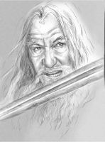 Gandalf by Ngaladel
