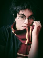 Harry Potter-3 by Qwaseer