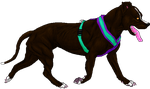 APBT Walk--Finished by UmahWD