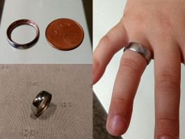 5 Cent selfmade Ring by xxBlomexx
