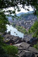 FengHuang by YKChiropter