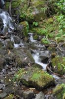Blurred Water Test 2 by rayrussell2000uk