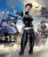 Maria hill- Agent of SHIELD by Peskykid