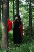 Arwen costume: dancing by Norloth