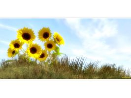 SunFlowerscenery by love1008