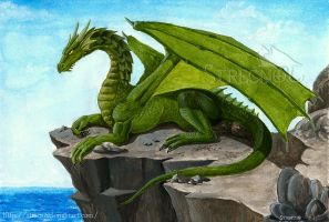 Green Dragon by Strecno