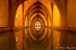 Reflection of Perfection by AndreaMazzocchetti