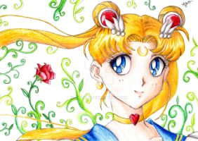 Sailormoon by anaslb