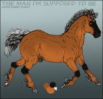 WRR The Man I'm Supposed To Be by Nessbeast