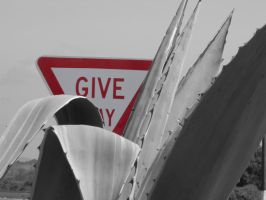 Give Way by jayd91