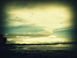 I need you here tonight by colorcreations