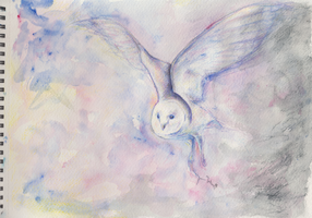 The Owl by SargasSall