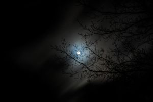 Goodnight moon by crosscut86