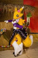 Renamon at Eurofurence 19 - 3 by Sethaa