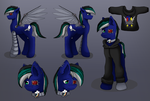 Commission: Character Refrence Sheet - Jackmar by dreamerswork