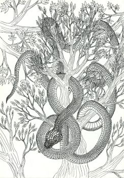Lineart: snake by kxeron