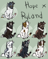 Ryland x Hope litter [CLOSED] by blackunia