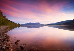 Fading Fast by jaelise