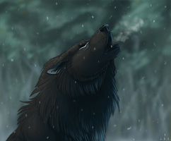 Howl like you mean it by TornTethers