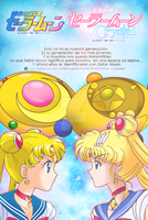 SAILOR MOON - 1992 - 2014 by JackoWcastillo
