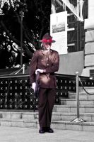 ANZAC Day 2012 Wellington, Tomb of Unknown Warrior by PauloHod