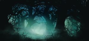 creepy forest by FisHgRiNd