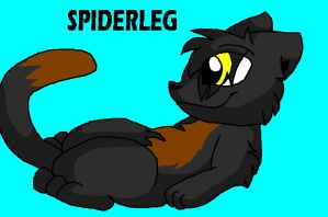 Cute Spiderleg by dragonpop1
