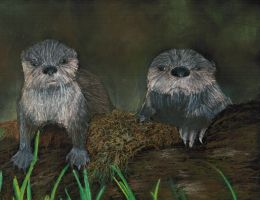 River Otters by BunnybeIIe