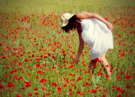 Picking poppies by anneclaires