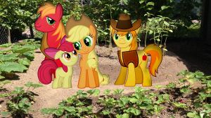 Apple Family Photo In The Garden by Macgrubor