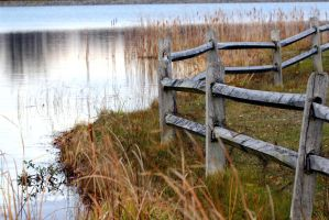 Another View of the fence on the pond. by sweatangel