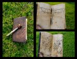Hiccup's Sketchbook by Pinkiebel