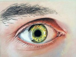 Competition Eye drawing by donnabe
