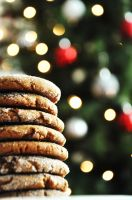 Molasses Ginger Cookies III by TantalizedBaker