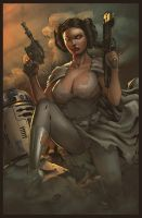 leia2 ITS by intheswamp